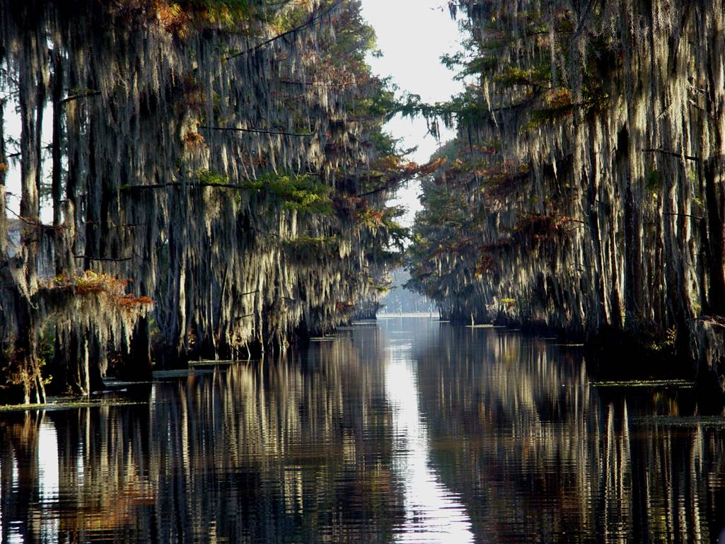 The great escape the haute 5 weekend getaways for for Caddo lake fishing