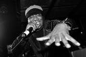 Hip-hop legend KRS One performs at Lavo.
