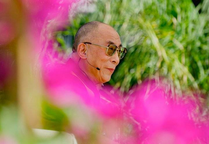 dalai lama surrounded by pink