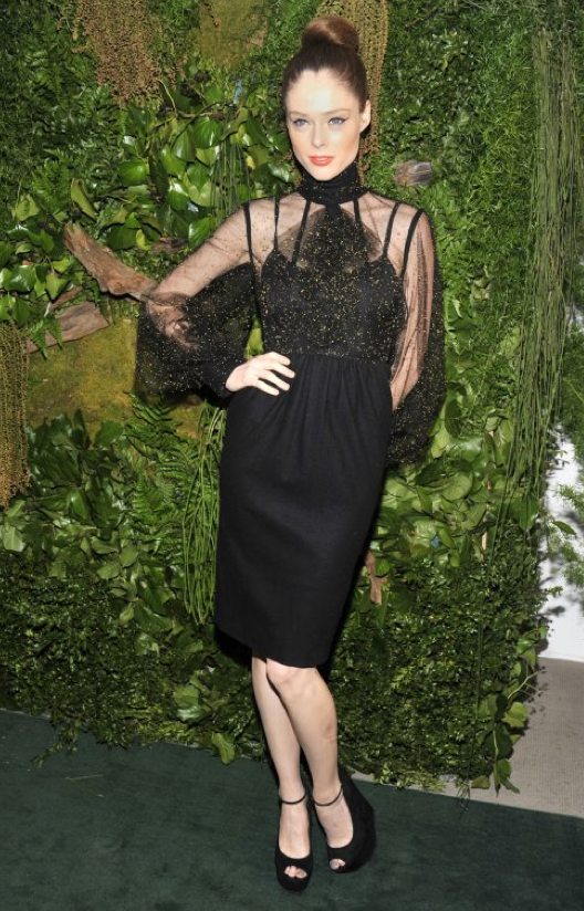Coco Rocha Rocks Fendi Gown At Christie's 3rd Annual Green Auction: Bid to Save the Earth""
