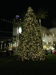 Christmas tree in Symphony Park. Photos: Devin Lloyd/Cashman Productions
