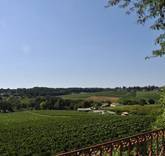 Vineyards by Christie's International Real Estate Debuts