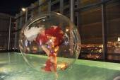 A showgirl in a pool bubble.