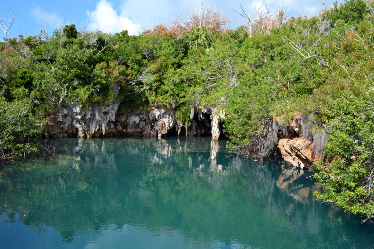 Blue Hole Park – Tom Moore's Jungle, Bermuda