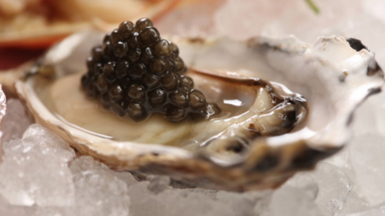 Where to Enjoy the Best Oysters in New York