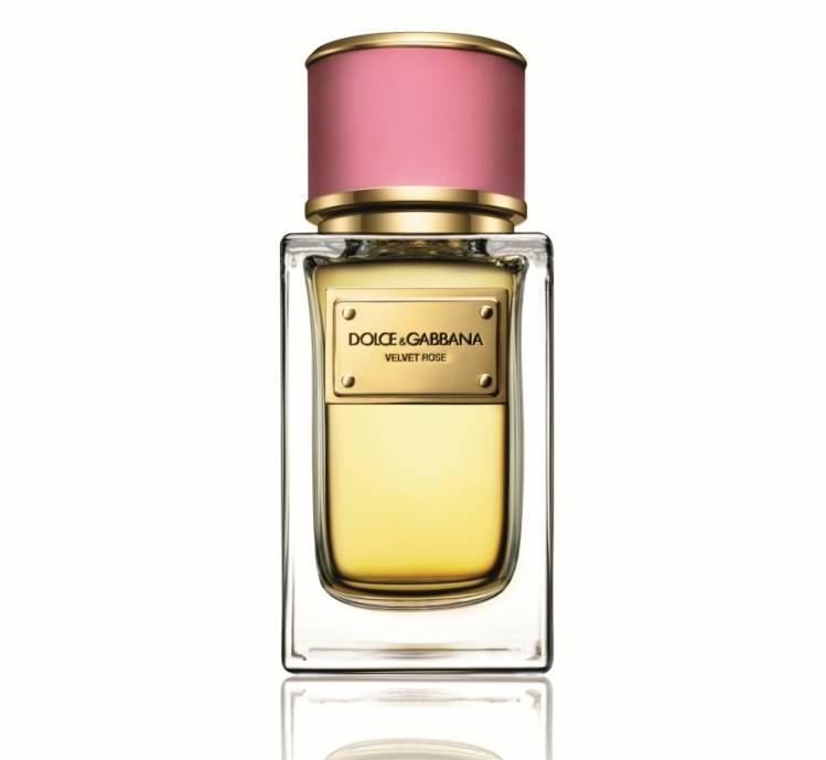 Dolce Gabbana Velvet Rose